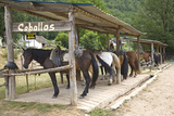 Caballos Horse Ranch Near Ainsa, Aragon, in the Pyrenees Mountains, Province of Huesca, Spain Photographic Print