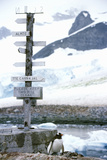 Directional Sign and Penguin at Chilean Station, Paradise Harbor, Antarctica Photographic Print