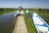 Two Tour Boats at Dock in Marsh Areas of Lake Naivasha, Great Rift Valley, Kenya, Africa Photographic Print