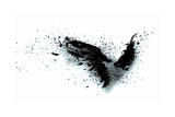 Black Wings Posters by Sergey Nivens