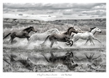 On the Run Posters by Phyllis Burchett