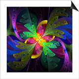 Multicolor Beautiful Fractal Flower Prints by  velirina