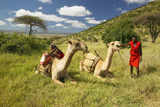 Masai in Red Robe and Camels and Acacia Tree at Lewa Conservancy, Kenya, Africa Photographic Print