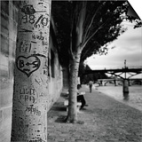 Graffiti on Tree Trunk Poster by Ariel Ruiz I Altaba