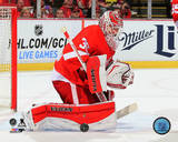 Jimmy Howard 2014-15 Action Photo