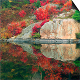 Autumn Colour Reflected in Murdock River, Sudbury, Ontario, Canada. Poster by Don Johnston