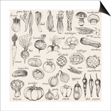 Hand-Drawn Vegetables Print by  Nikiparonak