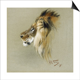 A Lion's Head Prints by Richard Friese