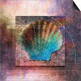 Colorful Clam Shell and Geometry Posters by Colin Anderson