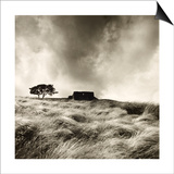 Top Withens Near Haworth, Yorkshire 1977 Prints by Fay Godwin