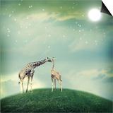 Giraffes In Friendship Or Love Concept Image Prints by  Melpomene