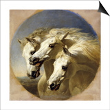Pharaoh's Horses, 1848 Poster by John Frederick Herring I