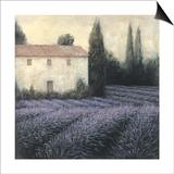 Lavender Field Detail Posters by James Wiens