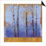 Birch Trees I Posters by Cheryl Martin