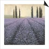 Lavender Horizon Detail Posters by James Wiens