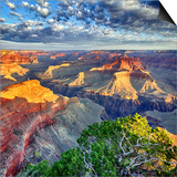 Morning Light at Grand Canyon Prints by  prochasson