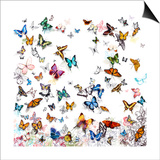 Papillon Posters by Allyson Fukushima