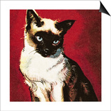 Siamese Cat Posters by  McConnell