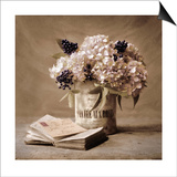 Estate Hydrangeas Print by Cristin Atria