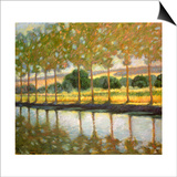 Trees Along a Canal Print by Sarah Waldron