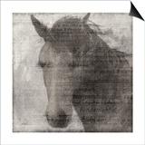 Equestrian Story 2 Print by Ken Roko