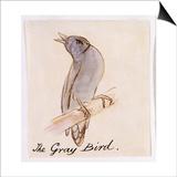 The Gray Bird Prints by Edward Lear