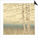 Birch Silhouette 2 Posters by James Wiens