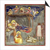 The Nativity, C.1305 Prints by  Giotto di Bondone