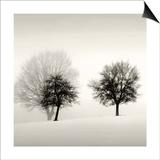 Winter Light Detail Print by Ilona Wellman