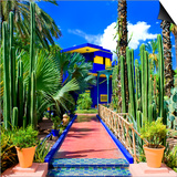 Jardin Majorelle - Marrakech - Morocco - North Africa - Africa Posters by Philippe Hugonnard