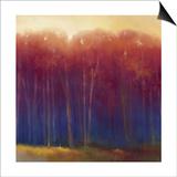 Deep Woods in Autumn Prints by Teri Jonas