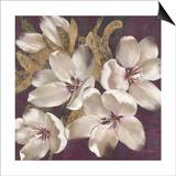 Plum Blossoms 1 Posters by Jurgen Gottschlag