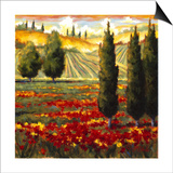 Tuscany in Bloom III Posters by J.m. Steele