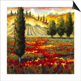 Tuscany in Bloom II Art by J.m. Steele