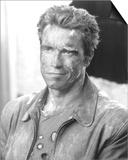 Arnold Schwarzenegger Print