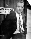 Paul Newman - Harper Prints