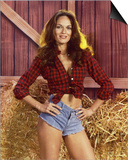 Catherine Bach - The Dukes of Hazzard Art