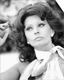 Sophia Loren Art