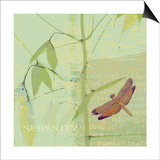 Serenity Prints by Wild Apple Portfolio