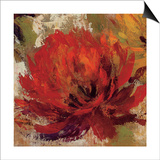 Fiery Dahlias II Prints by Silvia Vassileva
