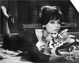 Claudia Cardinale - The Pink Panther Prints