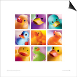 Duck Family Portraits Prints by Ian Winstanley