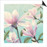 Southern Blossoms I Square Print by James Wiens