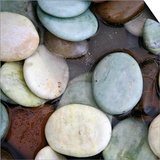 Stone Serenity I Posters by Nicole Katano