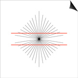 Hering Illusion Posters by Science Photo Library