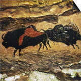 Cave Art: Bison Posters