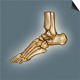 Normal Foot, 3D CT Scan Art by  ZEPHYR