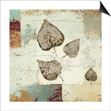 Silver Leaves I Prints by James Wiens