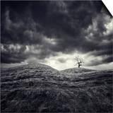 So Lonely Art by Luis Beltran