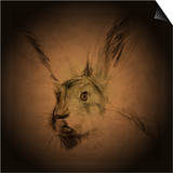 Listening Hare Art by Tim Kahane